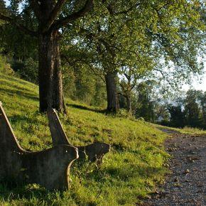 Feldkirch im Herbst