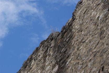 Von der Burg sind nur mehr die Grundmauern übrig.