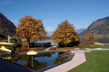 Das Zeller Strandbad - der Pool wird von bunten Blättern erobert.