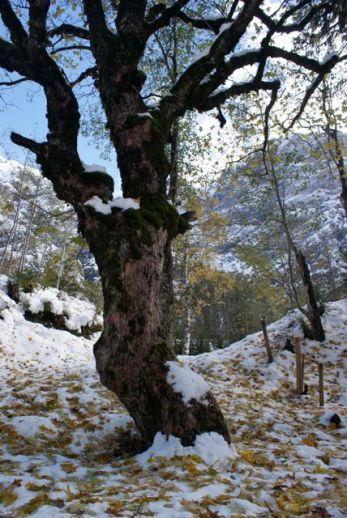 Der Wanderurlaub war vom frühen Wintereinbruch geprägt.