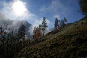 Herbst in Fusch