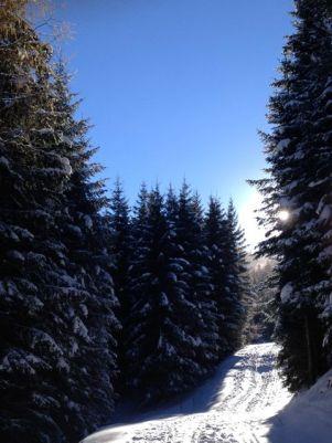 In einer Woche sind hier die Skifahrer unterwegs, noch gehört der Weg den Tourengehern.