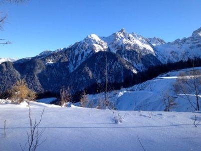 Das Schesa-Tobel, einer der größten Murbrüche Mitteleuropas - von oben.