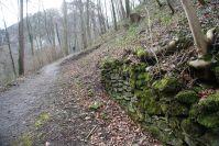 "Durch den Wald steigt der Weg weiter Richtung ""Neu-Montfort"" an."
