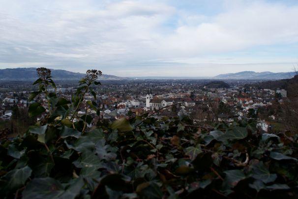 Oben in der Burg hat man einen tollen Fernblick ins Rheintal und bis zum Bodensee.