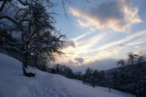 Feldkirch – Winter Wonder World