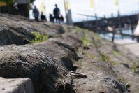 Die Steine am Hafen.