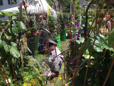 """Der """"Garten Vorarlbergs"""" beeindruckte an den vier Tagen mit seiner Bepflanzung."""