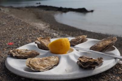 Das halbe Dutzend Austern steht zum Genuss bereit.
