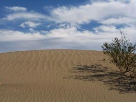Ein bisschen Sahara-Stimmung im Death Valley.