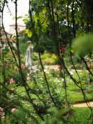 Viele tolle Rosen und Pflanzen von der ganzen Welt können bewundert werden.