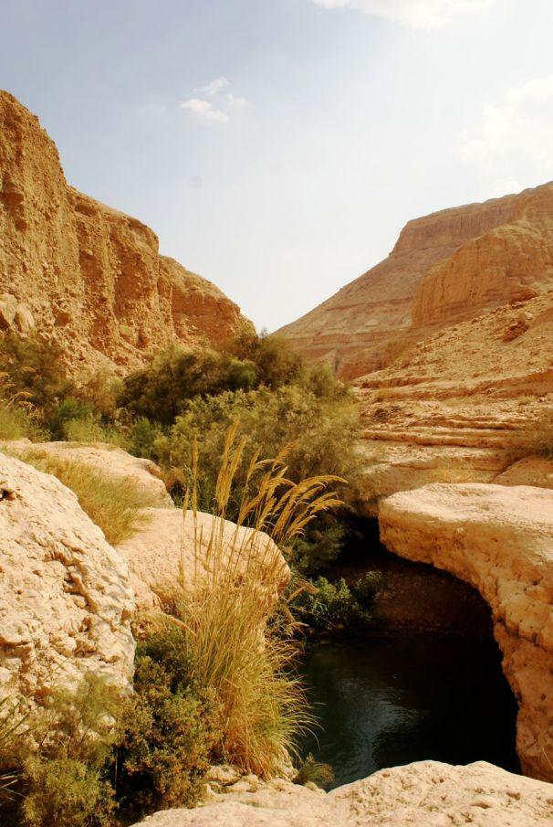 Die Flüsse aus der Wüste haben tiefe Täler in die Felsen geschnitten.