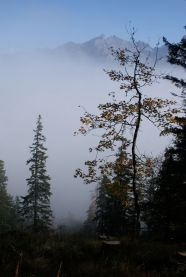 Beim Abstieg stieg die Nebeldecke etwas hoch ...