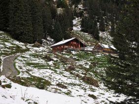 Die urige Rohr-Alpe.