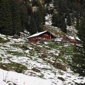 Die Rohr Alpe – Geheimtipp unterm HohenKasten