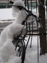 Radfahren ist bei diesen Bedingungen schwierig.