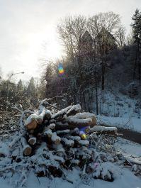 Wunderbarer Winter in Feldkirch.