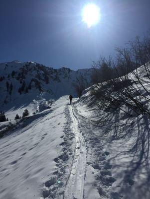 """Nach der """"Sack-Alpe"""" beginnt dann der Aufstieg."""