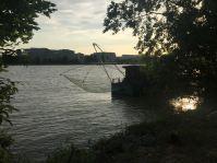 Erinnert an Kochi und Kerala: chinesische Netze an der Donau.