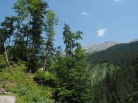 Der Weg hinauf ist kurz, aber steil und man genießt tolle Blicke auf die umliegenden Berge.