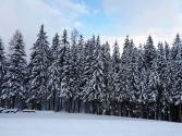 Denn auf Schneefall folgt in der Regel schnell wieder die Erwärmung.