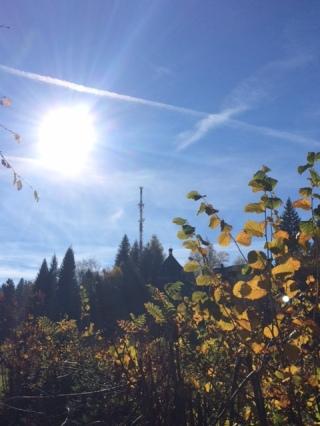 Am Pfänder befindet sich eine riesige Antenne des Österreichischen Rundfunkes.