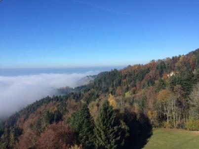 Bregenz und der Bodensee verbergen sich unter dem Nebelmeer.