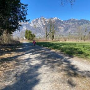 Finis Austriae – ganz imWesten